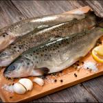مصرف سرانه ماهی در ایران نصف دنیاست
