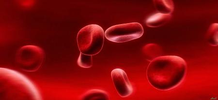 رابطه بین گروه های خونی با گیاهان دارویی