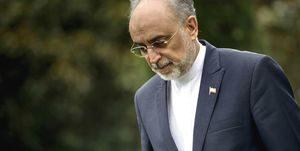 علیاکبر صالحی: نگذاشتیم ملت شهد عزتمندی را بچشند