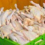 قیمت مرغ در کشتارگاه ۷۲۰۰ تومان شد