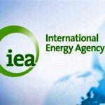 واکنش آژانس بین المللی انرژی به افت شدید تولید نفت عربستان