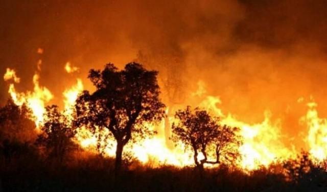 انتقاد شدید امام جمعه یاسوج از تیراندازی در عزا و عروسی، آتشسوزی جنگلهای گچساران و اجاره بها