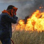 جنگل و جنگلبان در محاصره دود و آتش