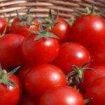 عجیبترین عوارض مصرف گوجه فرنگی با برخی مواد غذایی