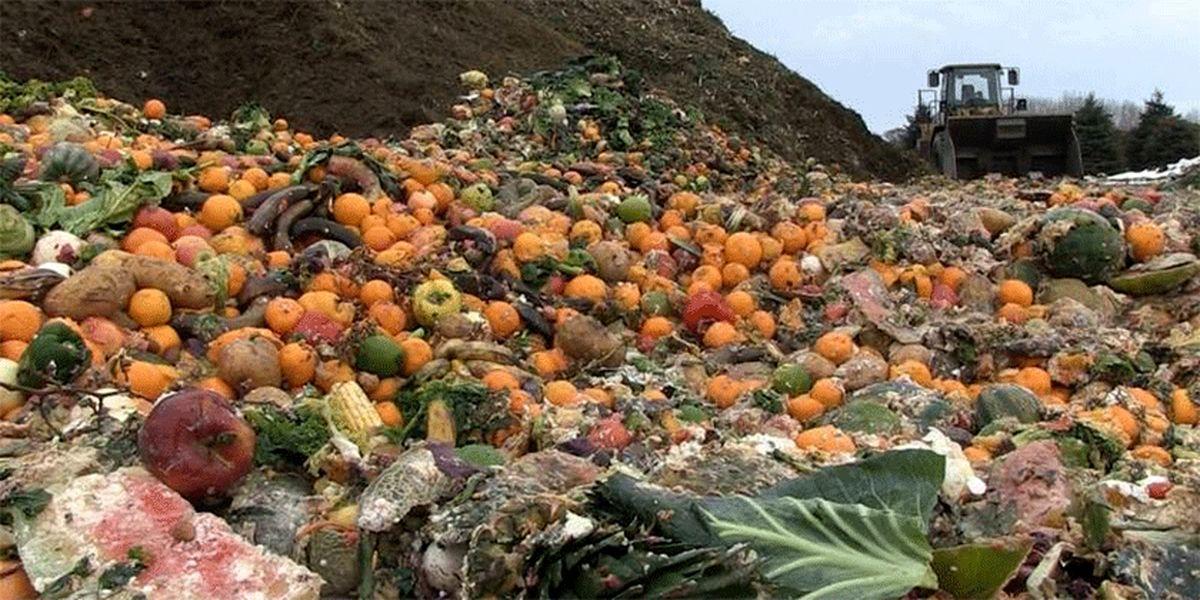 ۳ عامل اصلی مشکل سیب کاران / چرا باغداران مجبورند سیب را بیرون بریزند؟