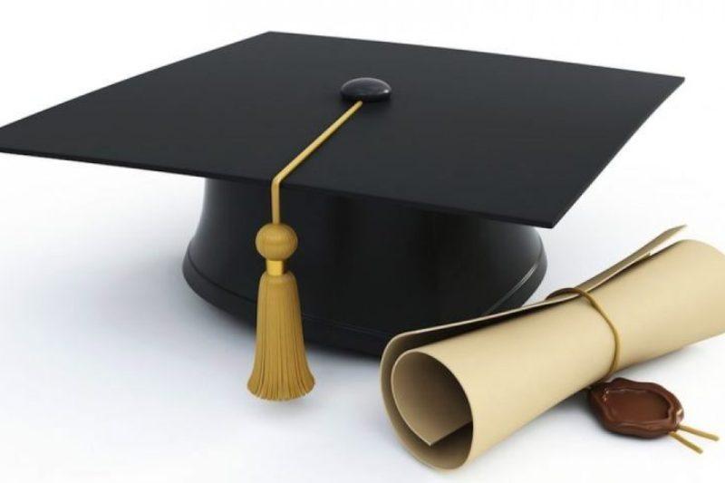۸۰ درصد بدنه آموزش عالی اصلا کار نمیکنند